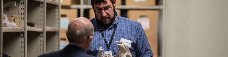 Board member works with science curator with animal skull in Collections